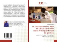 Bookcover of Le Zeukouen chez les Akyé de Côte-d'Ivoire entre Rituel initiatique et rituel de guérison
