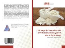 Portada del libro de Séchage du lactosérum et enrichissement du yaourt par le lactosérum