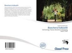 Обложка Boechera holboellii