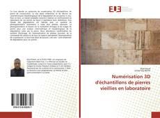Couverture de Numérisation 3D d'échantillons de pierres vieillies en laboratoire