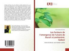 Bookcover of Les facteurs de l'emergence de l'ulcere de Buruli à Lambaréné, Gabon