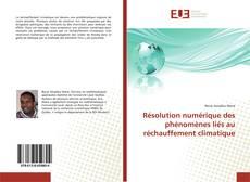 Capa do livro de Résolution numérique des phénomènes liés au réchauffement climatique