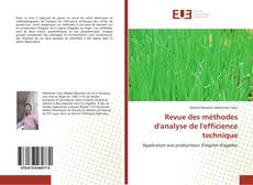 Bookcover of Revue des méthodes d'analyse de l'efficience technique
