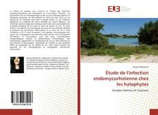 Обложка Étude de l'infection endomycorhizienne chez les halophytes