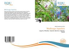 Bookcover of Medicago lupulina