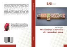 Bookcover of Microfinance et structure des rapports de genre