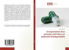 Buchcover von Encapsulation d'un principe actif dans un polymère biodégradable