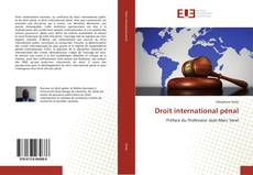 Bookcover of Droit international pénal