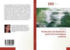 Couverture de Production de biodiesel à partir de microalgues marines