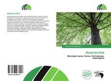 Buchcover von Amerorchis