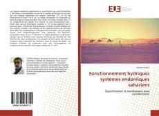 Buchcover von Fonctionnement hydriques systèmes endoréiques sahariens