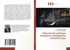 Обложка Efficacité des politiques monétaires et budgétaires du Burkina Faso