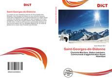 Borítókép a  Saint-Georges-de-Didonne - hoz
