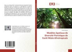 Bookcover of Modèles Spatiaux de Diversité Floristique de Forêt Mixte Afrotropicale