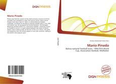 Portada del libro de Mario Pinedo
