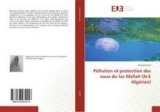 Copertina di Pollution et protection des eaux du lac Mellah (N-E Algérien)