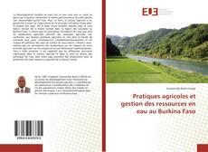 Bookcover of Pratiques agricoles et gestion des ressources en eau au Burkina Faso
