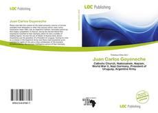 Bookcover of Juan Carlos Goyeneche