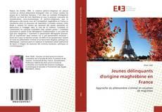 Couverture de Jeunes délinquants d'origine maghrébine en France
