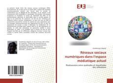 Couverture de Réseaux sociaux numériques dans l'espace médiatique actuel