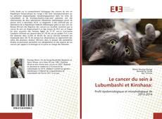 Bookcover of Le cancer du sein à Lubumbashi et Kinshasa:
