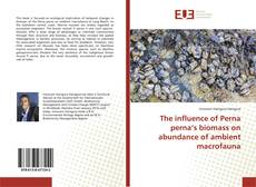 Bookcover of The influence of Perna perna's biomass on abundance of ambient macrofauna