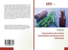 Copertina di Valorisation des Huiles Essentielles de Rosmarinus officinalis