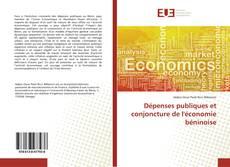 Dépenses publiques et conjoncture de l'économie béninoise的封面