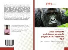 Etude d'impacts socioéconomiques du projet Kibali à l'est de la RDC kitap kapağı