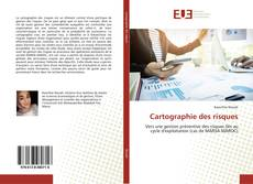 Bookcover of Cartographie des risques