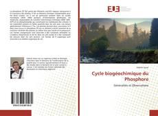 Bookcover of Cycle biogéochimique du Phosphore