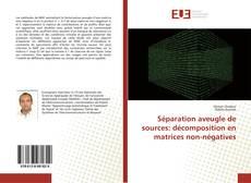 Copertina di Séparation aveugle de sources: décomposition en matrices non-négatives