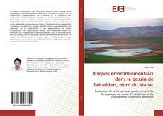 Buchcover von Risques environnementaux dans le bassin de Tahaddart, Nord du Maroc