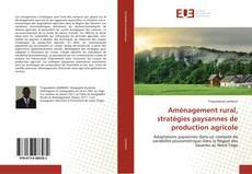 Bookcover of Aménagement rural, stratégies paysannes de production agricole