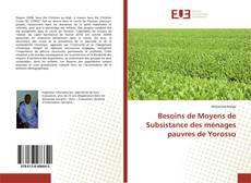 Capa do livro de Besoins de Moyens de Subsistance des ménages pauvres de Yorosso
