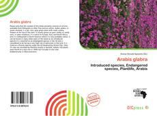 Bookcover of Arabis glabra