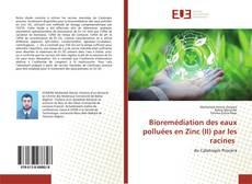 Couverture de Bioremédiation des eaux polluées en Zinc (II) par les racines