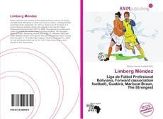 Buchcover von Limberg Méndez