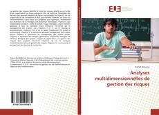 Analyses multidimensionnelles de gestion des risques kitap kapağı