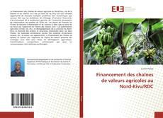 Financement des chaînes de valeurs agricoles au Nord-Kivu/RDC kitap kapağı