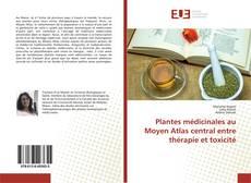 Bookcover of Plantes médicinales au Moyen Atlas central entre thérapie et toxicité