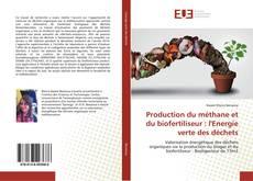 Production du méthane et du biofertiliseur : l'Energie verte des déchets的封面