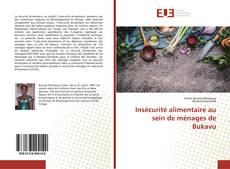 Couverture de Insécurité alimentaire au sein de ménages de Bukavu