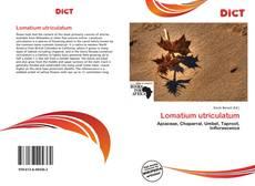 Bookcover of Lomatium utriculatum
