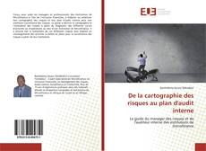 Buchcover von De la cartographie des risques au plan d'audit interne