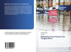 Bookcover of Reflections from Flood in the Yangtze River