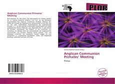 Anglican Communion Primates' Meeting kitap kapağı