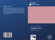 Capa do livro de Angélico Vieira
