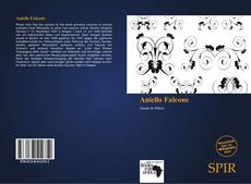 Aniello Falcone kitap kapağı