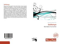 Bookcover of Seithenyn